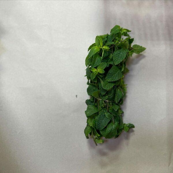 Frische Minze Blätter - Mint